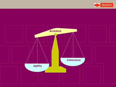 Agility Coherence Architect. Principal Architect Project- manager.