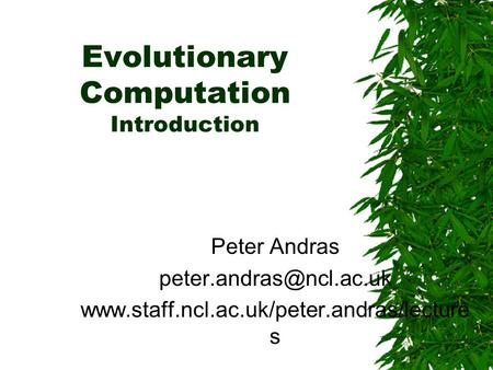 Evolutionary Computation Introduction Peter Andras  s.