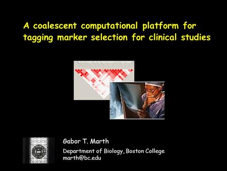 A coalescent computational platform for tagging marker selection for clinical studies Gabor T. Marth Department of Biology, Boston College