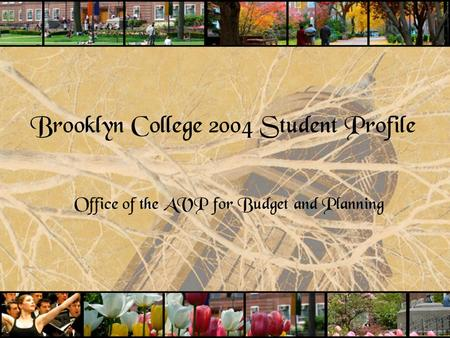 Brooklyn College 2004 Student Profile Office of the AVP for Budget and Planning.