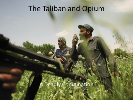 The Taliban and Opium A Deadly Combination. A brief history. Opium has been grown since 3400 B.C. The Taliban was not the first to use Opium to control.