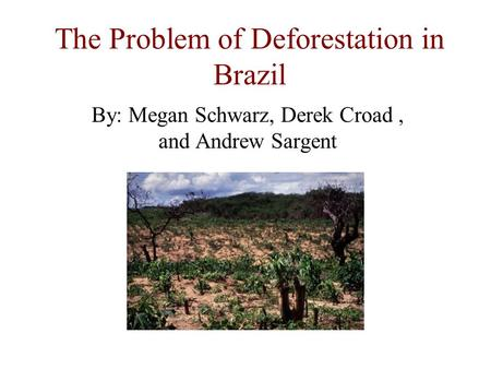 The Problem of Deforestation in Brazil By: Megan Schwarz, Derek Croad, and Andrew Sargent.