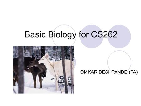 Basic Biology for CS262 OMKAR DESHPANDE (TA) Overview Structures of biomolecules How does DNA function? What is a gene? How are genes regulated?