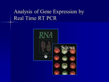 Analysis of Gene Expression by Real Time RT PCR. Broad and Long Term Objective To characterize the expression of ribulose 1-5 bisphosphate carboxylase.