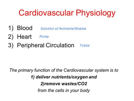 Cardiovascular Physiology 1)Blood 2)Heart 3)Peripheral Circulation The primary function of the Cardiovascular system is to 1) deliver nutrients/oxygen.