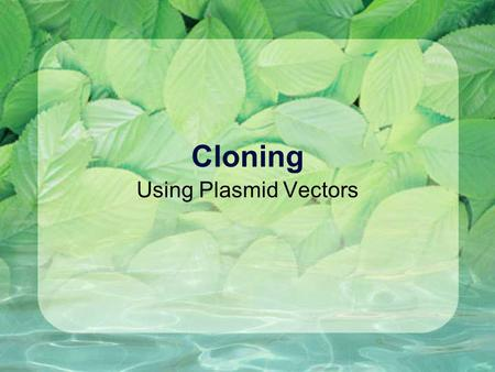 Cloning Using Plasmid Vectors Vector = a molecule used as a vehicle to carry foreign DNA into a host cell Simplest vector = plasmid.