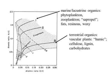 "Terrestrial organics: vascular plants: ""humic""; cellulose, lignin, carbohydrates marine/lacustrine organics: phytoplankton, zooplankton; ""sapropel""; fats,"