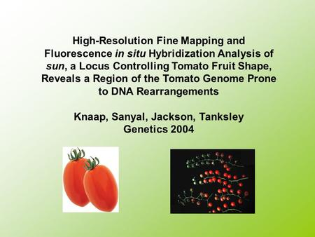 High-Resolution Fine Mapping and Fluorescence in situ Hybridization Analysis of sun, a Locus Controlling Tomato Fruit Shape, Reveals a Region of the Tomato.