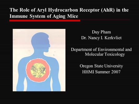 The Role of Aryl Hydrocarbon Receptor (AhR) in the Immune System of Aging Mice Duy Pham Dr. Nancy I. Kerkvliet Department of Environmental and Molecular.