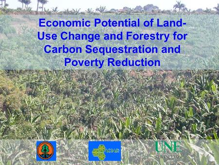 Economic Potential of Land- Use Change and Forestry for Carbon Sequestration and Poverty Reduction.