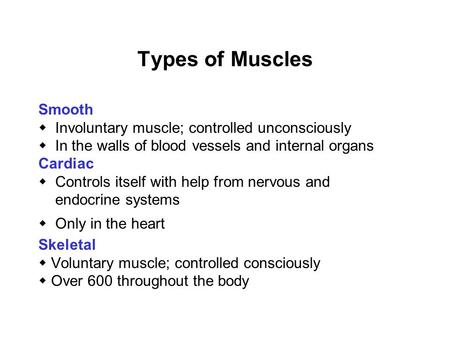 Types of Muscles Smooth  Involuntary muscle; controlled unconsciously  In the walls of blood vessels and internal organs Cardiac  Controls itself with.