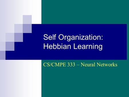 Self Organization: Hebbian Learning CS/CMPE 333 – Neural Networks.