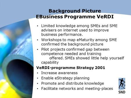 Background Picture EBusiness Programme VeRDI  Limited knowledge among SMEs and SME advisers on internet used to improve business performance.  Workshops.