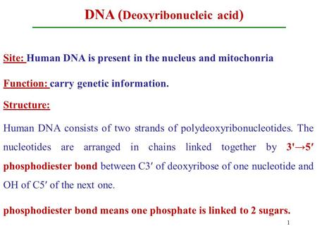 DNA ( Deoxyribonucleic acid ) Site: Human DNA is present in the nucleus and mitochonria Function: carry genetic information. Structure: Human DNA consists.