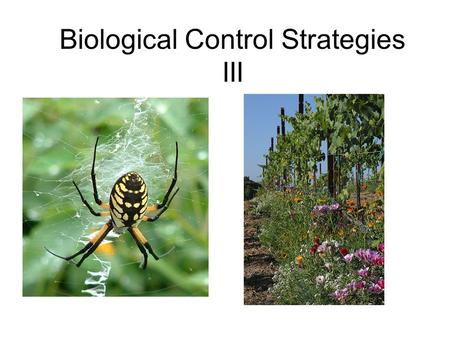 biological control as a pest management strategy Terms frequently used in discussions of integrated pest management:  and  economically desirable way is central to successful biological control strategies.