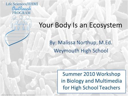 Your Body Is an Ecosystem By: Malissa Northup, M.Ed. Weymouth High School Summer 2010 Workshop in Biology and Multimedia for High School Teachers Background.