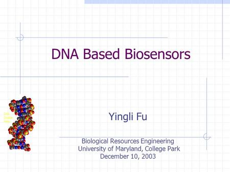 DNA Based Biosensors Yingli Fu Biological Resources Engineering University of Maryland, College Park December 10, 2003.