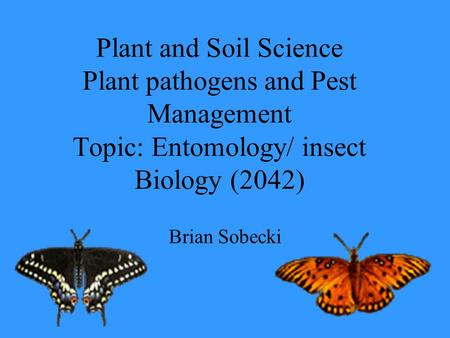 Plant and Soil Science Plant pathogens and Pest Management Topic: Entomology/ insect Biology (2042) Brian Sobecki.