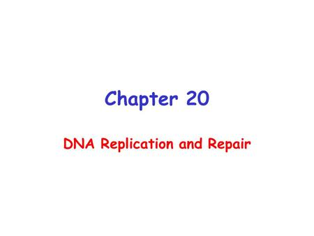 Chapter 20 DNA Replication and Repair. Watson and Crick Predicted Semi- conservative Replication of DNA Watson and Crick: It has not escaped our notice.