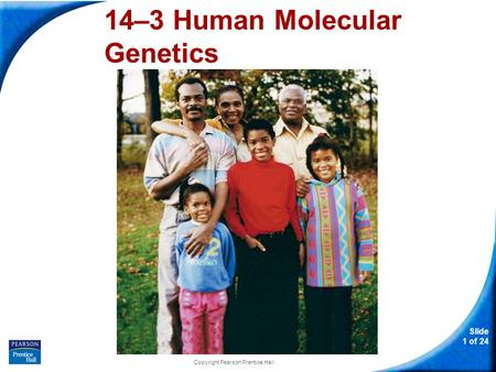 Slide 1 of 24 Copyright Pearson Prentice Hall 14–3 Human Molecular Genetics 14-3 Human Molecular Genetics.