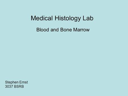 Medical Histology Lab Blood and Bone Marrow Stephen Ernst 3037 BSRB.