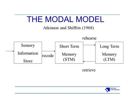 Sensory Information Store Short Term Memory (STM) Long Term Memory (LTM) recode rehearse retrieve Atkinson and Shiffrin (1968) THE MODAL MODEL.