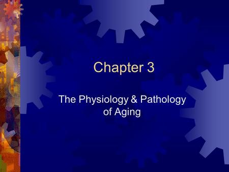 The Physiology & Pathology of Aging
