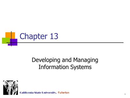 1 California State University, Fullerton Chapter 13 Developing and Managing Information Systems.
