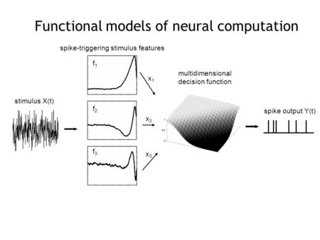 Spike-triggering stimulus features stimulus X(t) multidimensional decision function spike output Y(t) x1x1 x2x2 x3x3 f1f1 f2f2 f3f3 Functional models of.