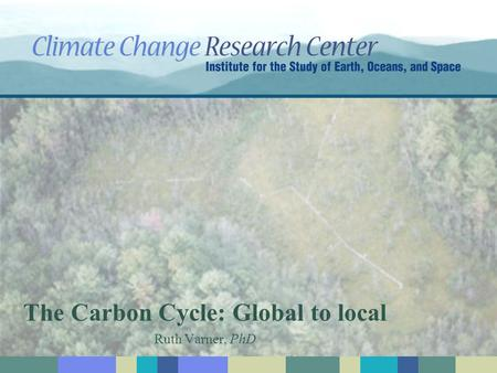 The Carbon Cycle: Global to local Ruth Varner, PhD.
