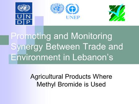 Promoting and Monitoring Synergy Between Trade and Environment in Lebanon's Agricultural Products Where Methyl Bromide is Used.
