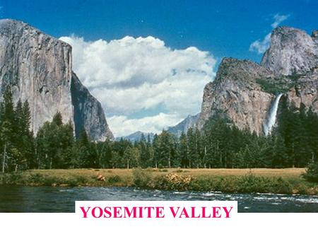 YOSEMITE VALLEY. GENERAL CHARACTERISTICS Yosemite means 'grizzly bear' 7 miles in length 1-2 miles in width Elevation almost exactly 4,000'