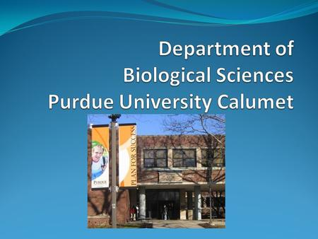 PUC Biological Sciences Faculty and Staff PUC Biological Sciences  12 faculty members (10 professors and 2 continuous lecturer/ lab Coordinator)  5.