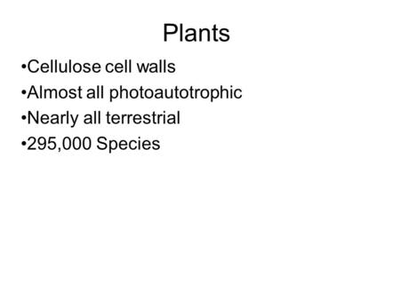 Plants Cellulose cell walls Almost all photoautotrophic Nearly all terrestrial 295,000 Species.
