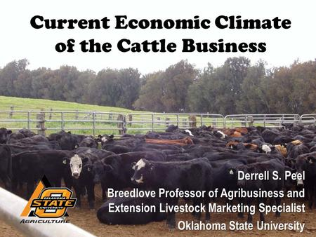 Current Economic Climate of the Cattle Business Derrell S. Peel Breedlove Professor of Agribusiness and Extension Livestock Marketing Specialist Oklahoma.