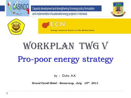 WORKPLAN TWG V Pro-poor energy strategy by : Duha A.K Grand Candi Hotel - Semarang, July 10 th 2011.