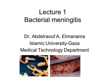 Lecture 1 Bacterial meningitis Dr. Abdelraouf A. Elmanama Islamic University-Gaza Medical Technology Department.
