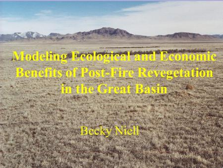 Modeling Ecological and Economic Benefits of Post-Fire Revegetation in the Great Basin Becky Niell.