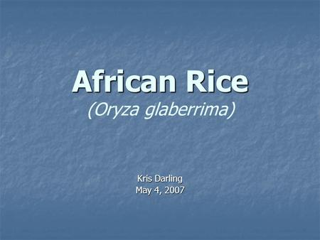African Rice African Rice (Oryza glaberrima) Kris Darling May 4, 2007.