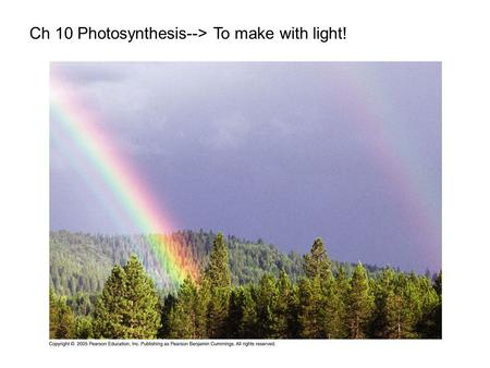 Ch 10 Photosynthesis--> To make with light!. LE 10-2 Plants Unicellular protist Multicellular algae Cyanobacteria Purple sulfur bacteria 10 µm 1.5 µm.