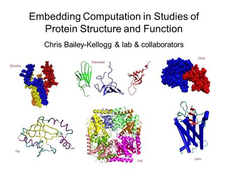 Embedding Computation in Studies of Protein Structure and Function Chris Bailey-Kellogg & lab & collaborators Shobha Xiaoduan Wei John Chris Fei.