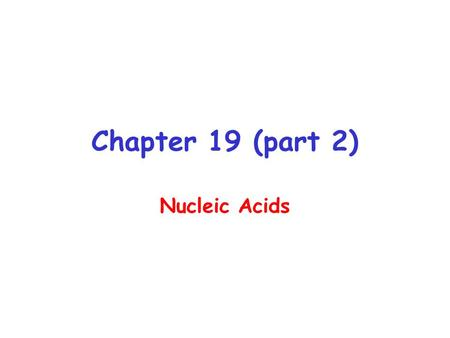 Chapter 19 (part 2) Nucleic Acids. DNA 1 o Structure - Linear array of nucleotides 2 o Structure – double helix 3 o Structure - Super-coiling, stem- loop.