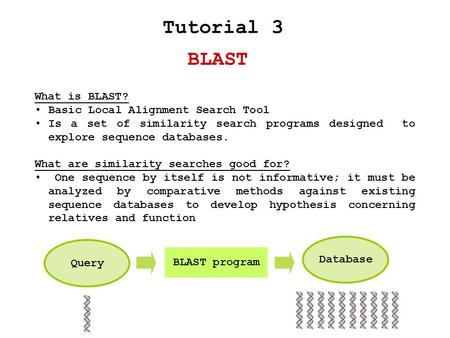 BLAST Tutorial 3 What is BLAST? Basic Local Alignment Search Tool Is a set of similarity search programs designed to explore sequence databases. What are.