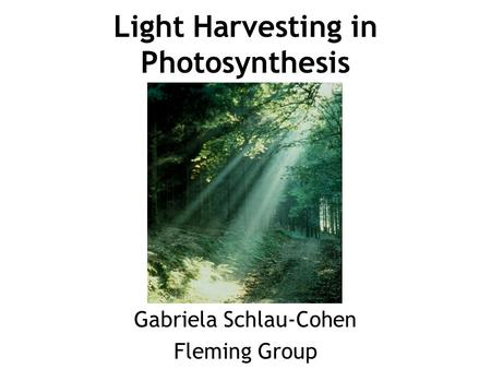 Light Harvesting in Photosynthesis Gabriela Schlau-Cohen Fleming Group.