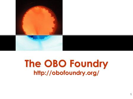 1 The OBO Foundry  2 A prospective standard designed to guarantee interoperability of ontologies from the very start (contrast.