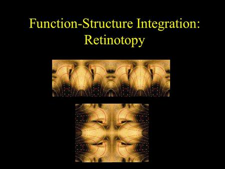 Function-Structure Integration: Retinotopy. What does your brain do to Mona?