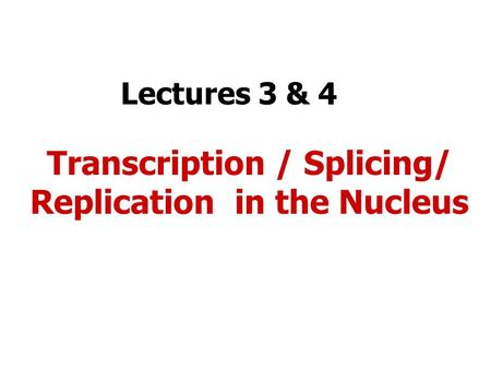 Lectures 3 & 4 Transcription / Splicing/ Replication in the Nucleus.