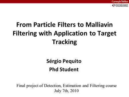 From Particle Filters to Malliavin Filtering with Application to Target Tracking Sérgio Pequito Phd Student Final project of Detection, Estimation and.