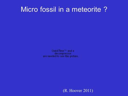 Micro fossil in a meteorite ? (R. Hoover 2011). Lecture 7: Geologic History of Life Oldest signatures of life in sedimentary rocks: Microfossils Molecular.