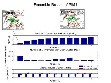 Ensemble Results of PIM1 PIM1-15-6 PIM1-77-5. Ensemble Results of GSK3 GSK3-79-2 GSK3-63-18 GSK3-59-2.